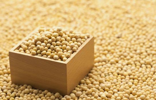 Proceso de extrusión de proteína de soja.