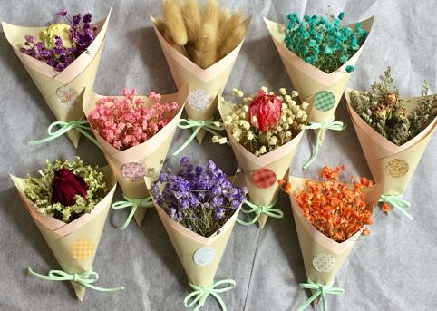 El origen y desarrollo de las flores secas.