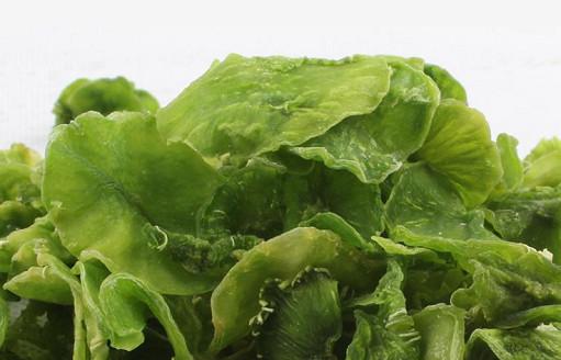 Investigación del progreso de los vegetales deshidratados.