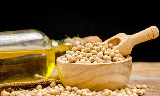 Progreso tecnológico de la industria de refinación de aceite de soja