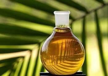 Estudio sobre la actividad antibacteriana de los derivados originales del aceite de coco.