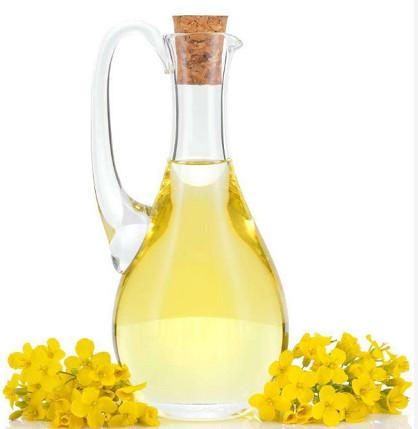 Avances en la investigación sobre la función nutricional del aceite de canola.
