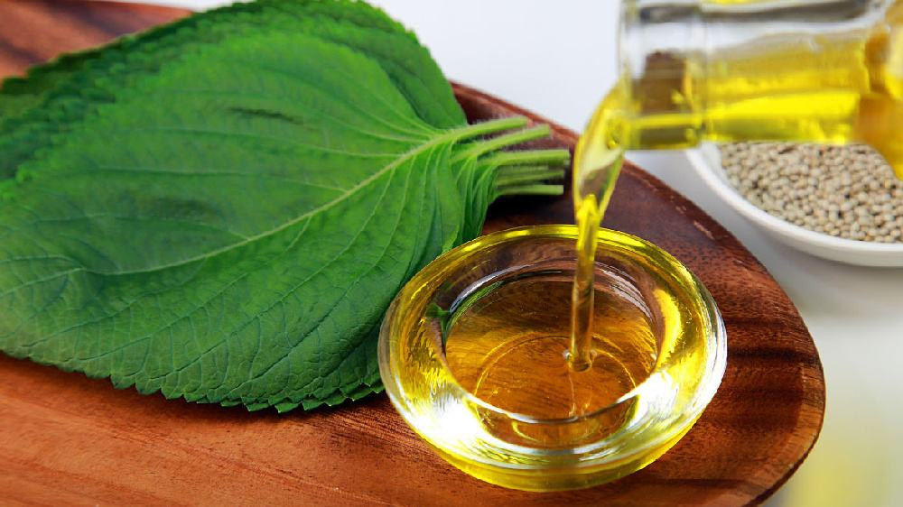 Estudio sobre las propiedades físicas y químicas del aceite de semilla de cáñamo en diferentes condiciones de almacenamiento