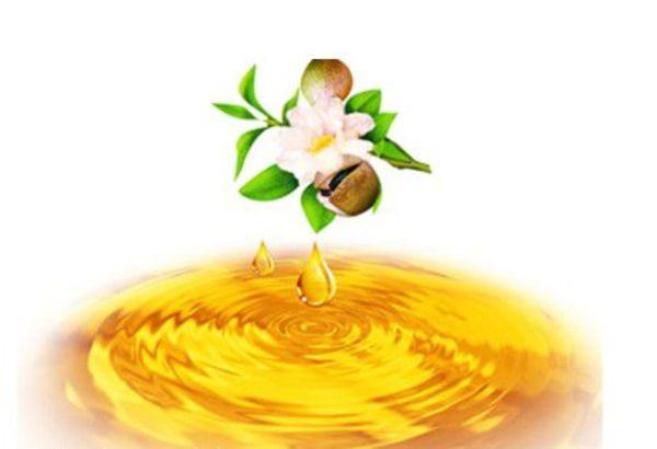 La eficacia del aceite de semilla de camelia (2)
