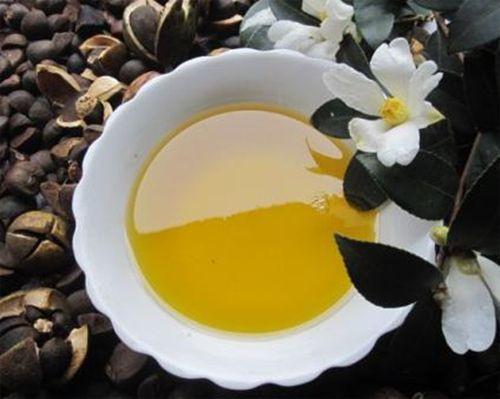 Avances en la investigación y aplicación del aceite de semilla de camelia