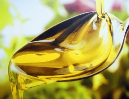 Método de extracción de aceite de aceite de semilla de camelia.